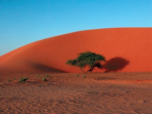 Circuit Couleurs de Namibie