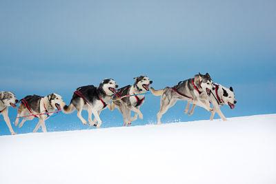 Finlande - Suède - Circuit Cap sur la Laponie en Hiver