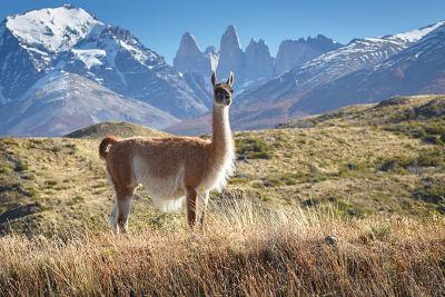 Argentine - Chili - Circuit Ailleurs en Argentine et au Chili